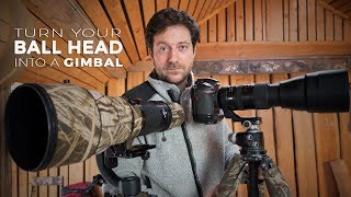 Download How to turn your BALL HEAD into a GIMBAL for wildlife photography Video