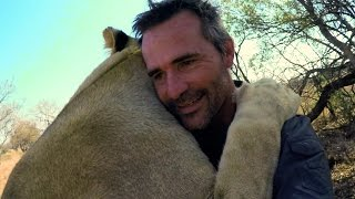 Download Vayetse Is A Lady Killer! | The Lion Whisperer Video