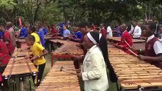 Download Zimbabwe is the new Guinness World record holder for the biggest Marimba ensemble Video