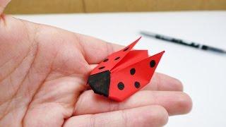 Download Marien Käfer Origami | Falten für Kinder | Deko & Geschenk Video