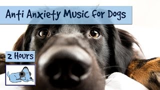 Download Anti Anxiety Music for Dogs - Cure Separation Anxiety with Dog Music! Video