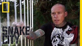 Download The Vanishing Mamba   Snake City Video