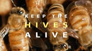 Download Keep the Hives Alive (Full Documentary) Video