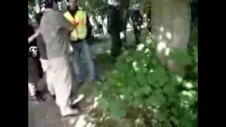 Download Polizeihund beißt Fortuna Köln Fan Video