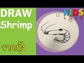 Download วาดภาพกุ้ง l สอนเด็กวาดรูป l How to draw Shrimp : Kids love Video