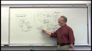 Download Basic Academic Writing Video