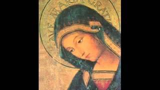 Download Schubert - Ave Maria Video