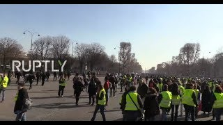 Download LIVE: Yellow Vest protests continue for 14th straight week in Paris Video