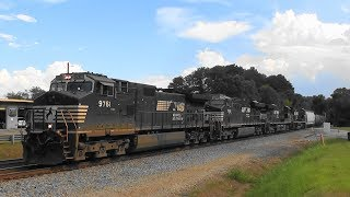 Download NS 118 working hard with a heavy train in Stockbridge Video