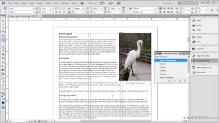 Download Adobe Acrobat XI Tutorial | Creating Bookmarks Video