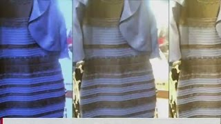 Download What color is this dress? Video