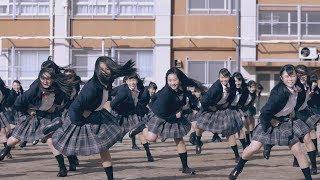 Download 登美丘高校ダンス部、ついにハリウッド映画「グレイテスト・ショーマン」とコラボ! 制服姿で踊る 感動のPV完成 The Greatest Showman Video