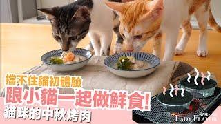 Download 小貓一起做中秋鮮食!擋不住貓初體驗~【好味貓廚房】EP113 Video