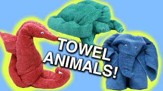 Download How To Make Towel Animals Video