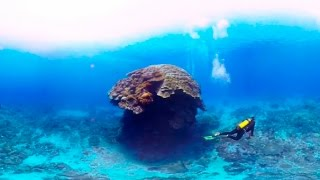 Download Scuba Diving Short Film in 360° Green Island, Taiwan ( 綠島, 台灣) 4K Video Quality Video