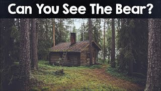 Download Nobody Can See All The Hidden Animals । Optical Illusions । Brain Teasers Video