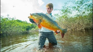 Download The Fish That Broke The Record - (Amazon River BEAST) Video