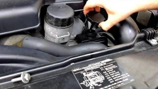 Download How to Check or Add Power Steering Fluid on a Mercedes Benz Video