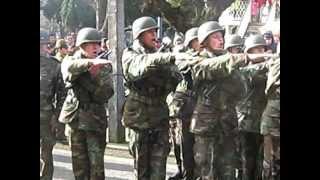 Download juramento a la bandera 10 julio 2010 R.A.Nº2 Maturana la union Video
