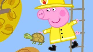 Download Peppa Pig English Episodes | Peppa Pig Saves Mr Tiddles! Peppa Pig Official Video