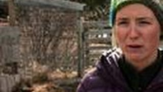 Download Eve's Cannibal Hen | Alaska: The Last Frontier Video