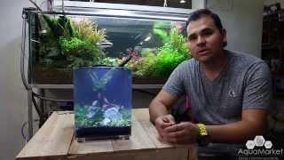Download Dymax IQ5 -Unboxing Montaje de nano acuario plantado Video