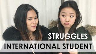 Download International Student Struggles Video
