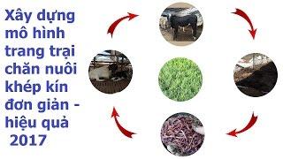 Download Mô hình trang trại chăn nuôi khép kín mang lại hiệu quả như thế nào? Video