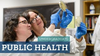 Download Major Decisions: Public Health Video