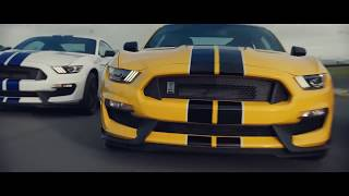 Download Tribute to Ford Mustang | Music Video Video