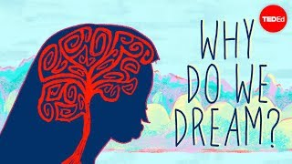 Download Why do we dream? - Amy Adkins Video