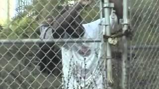 Download Kache Kashala dans LIBERATION.mp4 Video