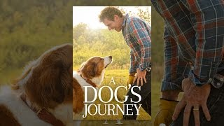Download A Dog's Journey Video
