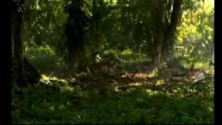 Download Dinosaur Planet - Pod's Travel's - Part 2 Video