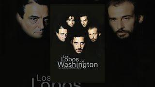 Download Los Lobos de Washington Video