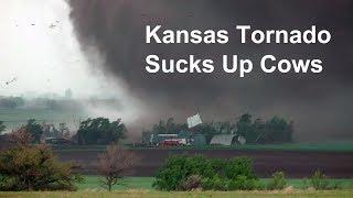 Download Kansas tornado sucks up cows and blows farm apart Video