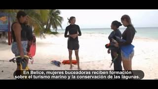 Download Buceadoras restauran corales en el Caribe Video