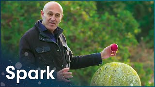 Download The Amazing World Of Gravity (Full Physics Documentary) | Spark Video