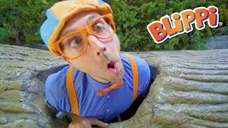 Download Blippi Learns at the Children's Museum | Learn to Count for Toddlers and more! Video