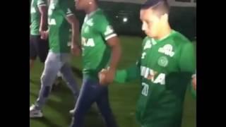 Download Der Moment, als die überlebenden Chapecoense-Spieler ihr Stadion betreten Video