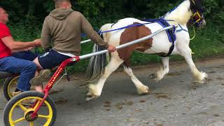 Download Appleby Horse Fair Friday 2018 Video