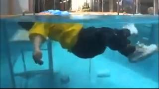 Download Un bebe cae a una piscina y el solo se salva! Video