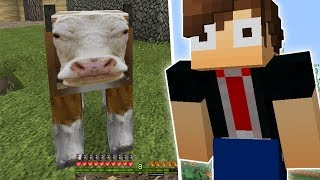 Download AS 5 PIORES TEXTURAS DO MINECRAFT!! Video