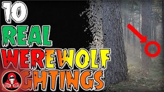 Download 10 REAL Werewolf Sightings - Darkness Prevails Video