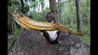 Download New!!! 6 Feet DRY FISH Fried Rice Prepared by my Daddy Arumugam / Village food factory Video