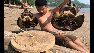 Download Primitive Technology: sundial and survive a day at the seashore wilderness Video
