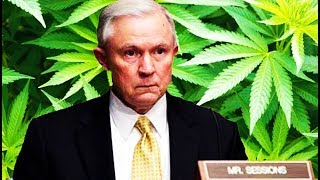 Download Jeff Sessions Can't Wait To Imprison As Many People of Color As Possible Over...Marijuana Video