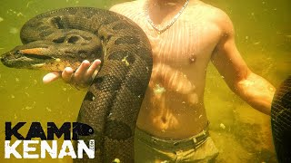 Download Swimming with a Giant Green Anaconda! Video
