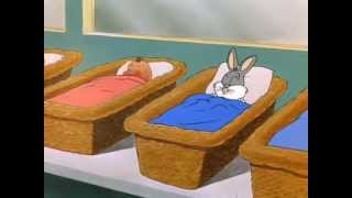 Download The Music of Bugs Bunny Video