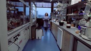 Download Chemistry at Princeton: Profiles of Young Chemists #1 Video